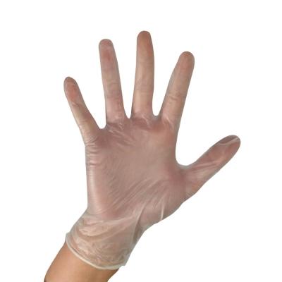 PHE Vinyl Gloves Clear Powder Free 1000 - Size: Small