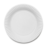 "Paper Plates 9"" 250 Pack"