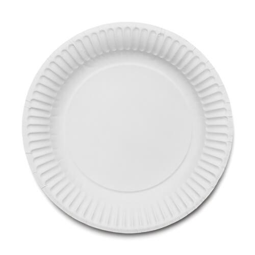 Paper Plates 9  250 Pack  sc 1 st  Gompels Healthcare & Paper Plates 9