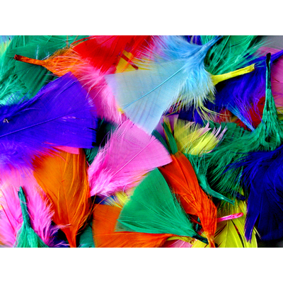Feathers Assorted Colours 50g