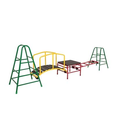 Bridge and Ladder Play Gym Set