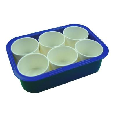 6 Pot Paint Tray