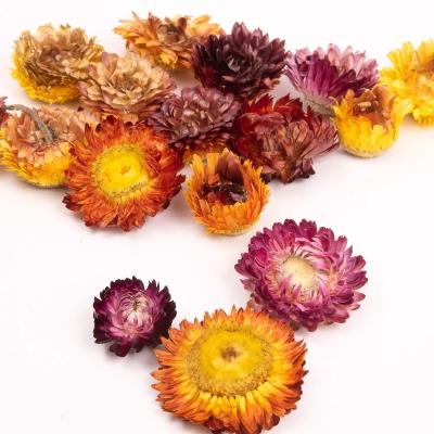 Dried Flower Heads 75g