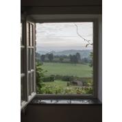 "Window Frame Wall Vinyl Horse Field 60"" x 40"""