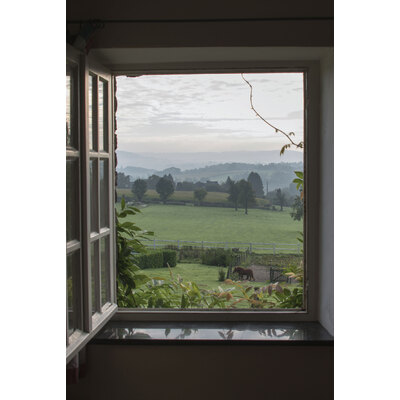 Window Frame Wall Vinyl Horse Field 60 X 40 Gompels Healthcare