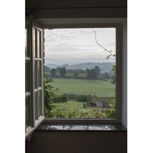 window frame wall vinyl horse field 60 - Window Frame