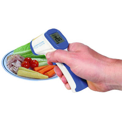 Mini Raytemp Infrared Food Thermometer