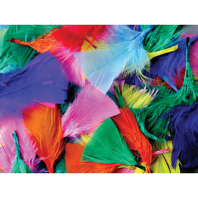 Gompels Feathers Assorted Colours 50g