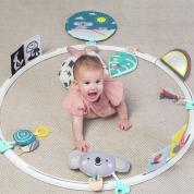 Baby Activity Hoop