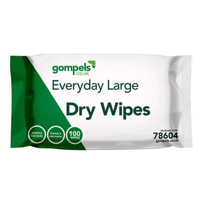 Everyday Dry Wipes Large 28x33cm 100 Pack