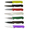 Paring Knife 3