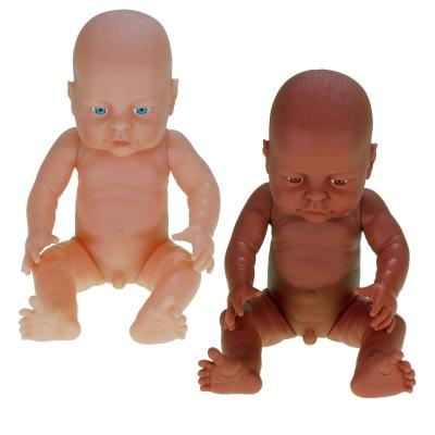 Anatomically Correct Doll Boy