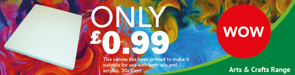 Stretched canvas only 99p each